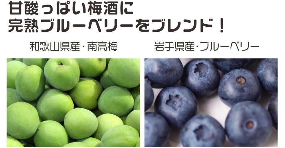 本場の産地紀州南高梅,生産量一番の和歌山のブルーベリー果汁