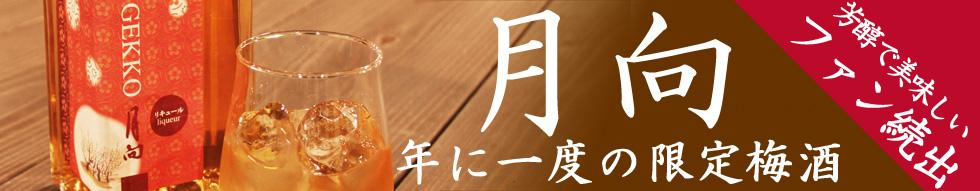 sp_gekko.jpg